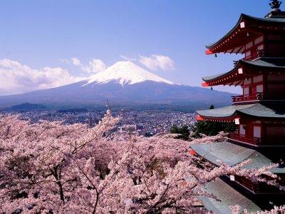 japon paysage photo picture mont fuji sakura cerisier temple tradition voyage